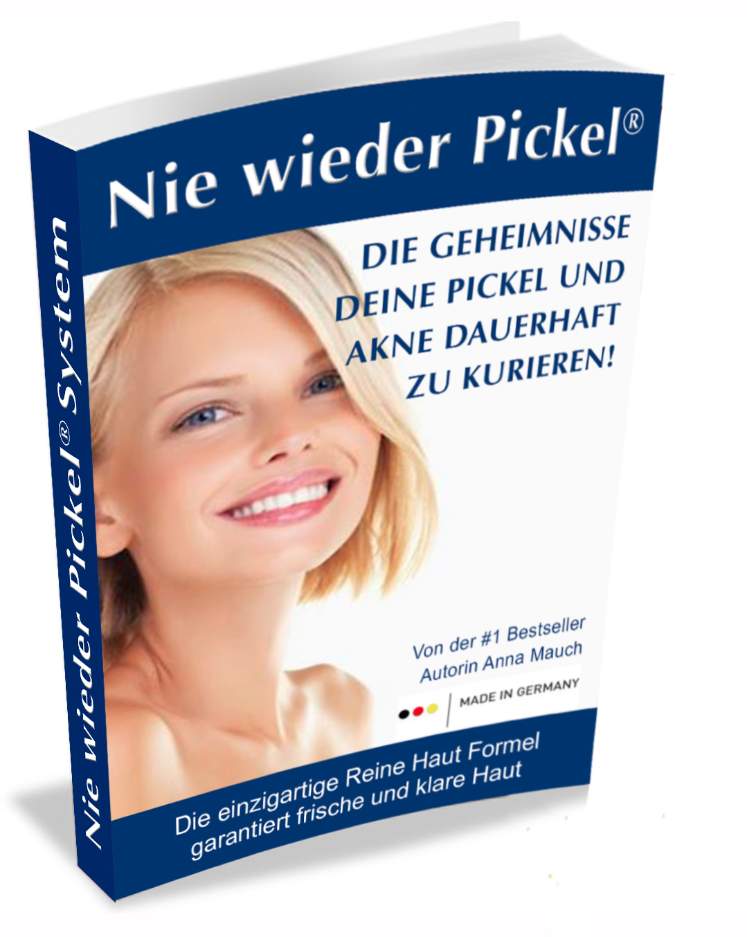 nie_wieder_pickel_cover_1_3D